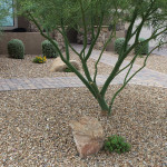 kaylor-front-yard-rock-tree-pavers